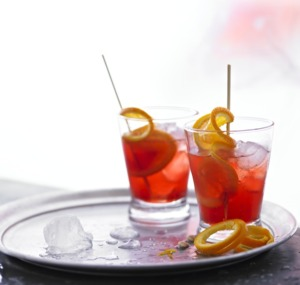 Sloe Gin | Sloe Gin Party Servings